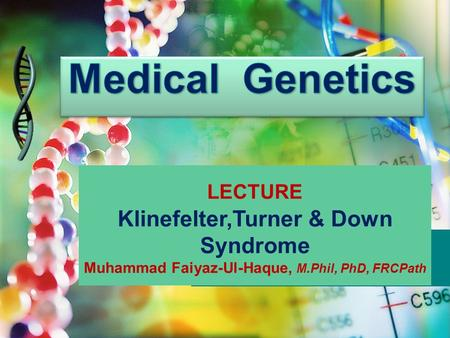 Medical Genetics Klinefelter,Turner & Down Syndrome LECTURE