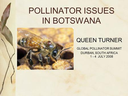 POLLINATOR ISSUES IN BOTSWANA QUEEN TURNER GLOBAL POLLINATOR SUMMIT DURBAN, SOUTH AFRICA 1 - 4 JULY 2008.