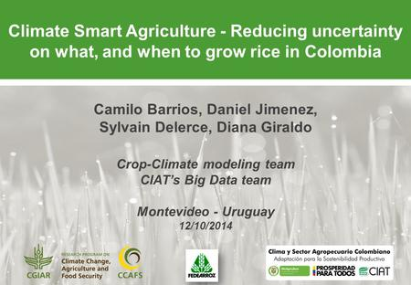 Climate Smart Agriculture - Reducing uncertainty on what, and when to grow rice in Colombia Camilo Barrios, Daniel Jimenez, Sylvain Delerce, Diana Giraldo.
