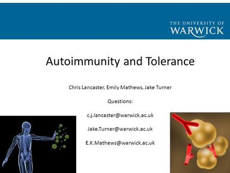 Autoimmunity and Tolerance Chris Lancaster, Emily Mathews, Jake Turner Questions: