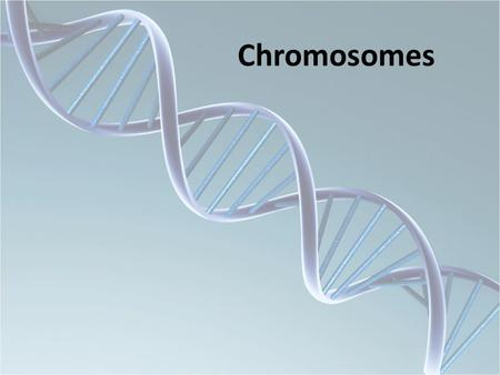 Chromosomes. Chromosome Abnormalities Numerical abnormalities Structural abnormalities Mixoploidy.