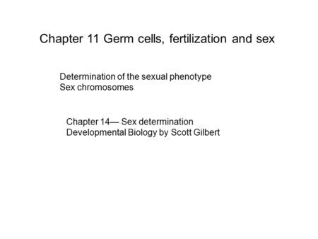 Chapter 11 Germ cells, fertilization and sex Determination of the sexual phenotype Sex chromosomes Chapter 14— Sex determination Developmental Biology.