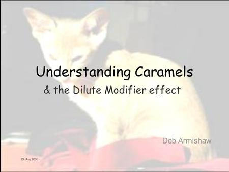 24 Aug 2006 Understanding Caramels Deb Armishaw & the Dilute Modifier effect.