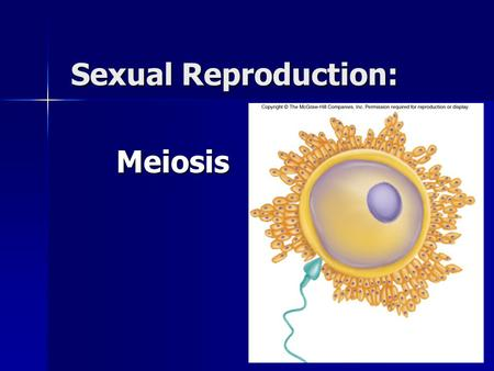 Sexual Reproduction: Meiosis. What is Sexual Reproduction? Combines genetic material from two parents to produce a new individual Combines genetic material.