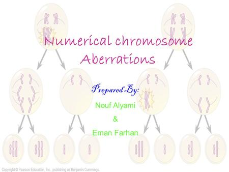 Numerical chromosome Aberrations