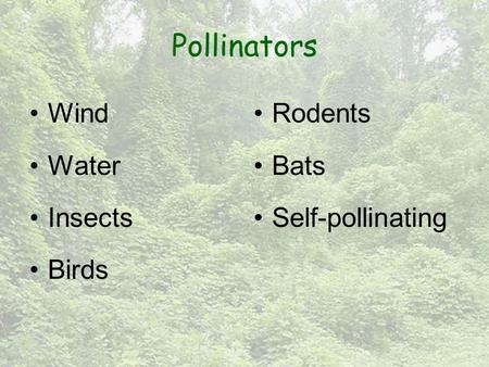 Pollinators Wind Water Insects Birds Rodents Bats Self-pollinating.