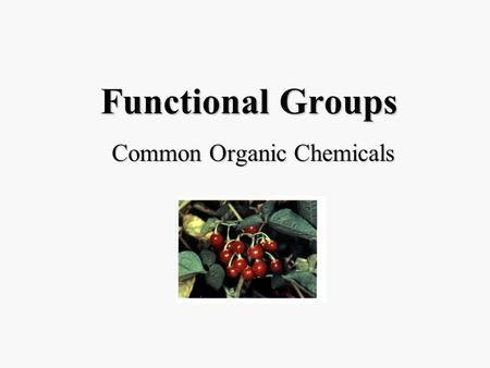 Functional Groups Common Organic Chemicals. Methanol †CH 3 OH Wood alcohol. Indirectly poisonous; ingestion of 50 ml usually fatal.