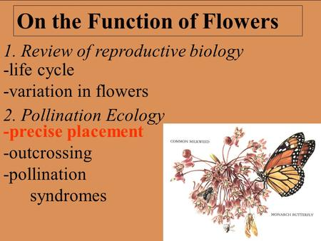 1. Review of reproductive biology 2. Pollination Ecology On the Function of Flowers -precise placement -outcrossing -pollination syndromes -life cycle.