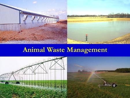 Animal Waste Management. Outline Manure/Waste Characteristics Animal Waste Handling Systems Sampling Animal Waste Management.