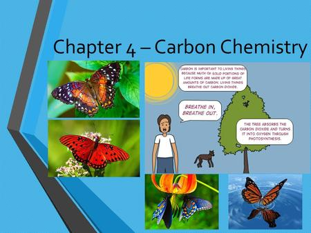 Chapter 4 – Carbon Chemistry. Section 1: Properties of Carbon Because of its unique ability to combine in many ways with itself and other elements, carbon.