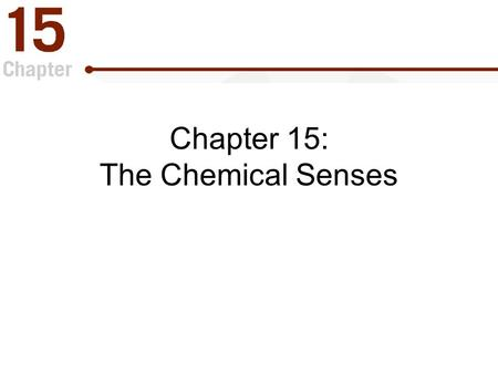 "Chapter 15: The Chemical Senses. The Chemical Senses "" Gatekeepers "" of the body which –Identify things that should be consumed for survival. –Detect."