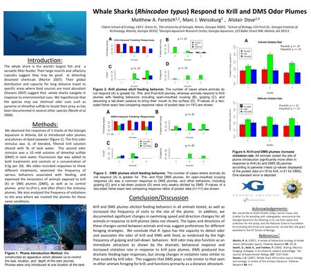 A Whale Sharks (Rhincodon typus) Respond to Krill and DMS Odor Plumes Matthew A. Foretich 1,2, Marc J. Weissburg 2, Alistair Dove 2,3 1 Odum School of.