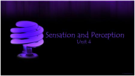 Sensation and Perception Unit 4. The Basics of Sensation -Sensation -Behavior often begins with sensory input -Process by which we receive, transform,