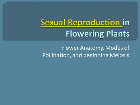 Flower Anatomy, Modes of Pollination, and beginning Meiosis.
