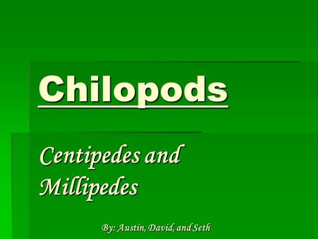 Chilopods Centipedes and Millipedes By: Austin, David, and Seth.