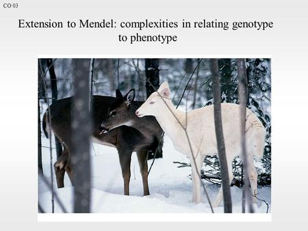 CO 03 Extension to Mendel: complexities in relating genotype to phenotype.