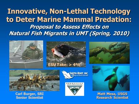 Innovative, Non-Lethal Technology to Deter Marine Mammal Predation: Proposal to Assess Effects on Natural Fish Migrants in UMT (Spring, 2010) Matt Mesa,