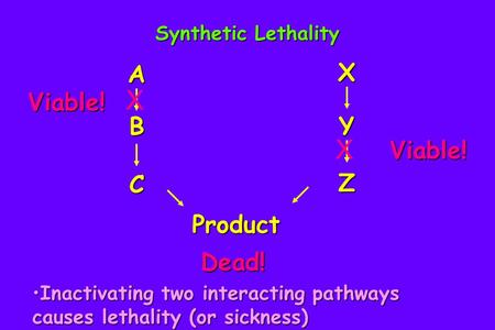 X X X A Viable! B Y Viable! Z C Product Dead! Synthetic Lethality