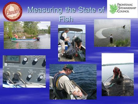 Measuring the State of Fish.  There are many human stressors that impact a fish community and specific fish species such as: fishing, habitat loss, invasive.