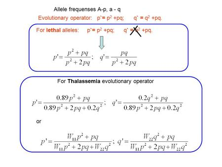 Evolutionary operator: p`= p 2 +pq; q` = q 2 +pq. For lethal alleles: p`= p 2 +pq; q` = q 2 +pq. Allele frequenses A-p, a - q For Thalassemia evolutionary.