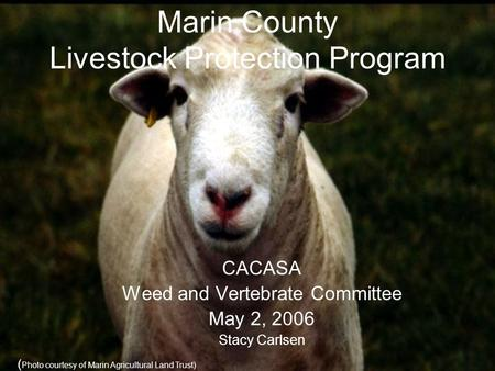 Marin County Livestock Protection Program CACASA Weed and Vertebrate Committee May 2, 2006 Stacy Carlsen ( Photo courtesy of Marin Agricultural Land Trust)