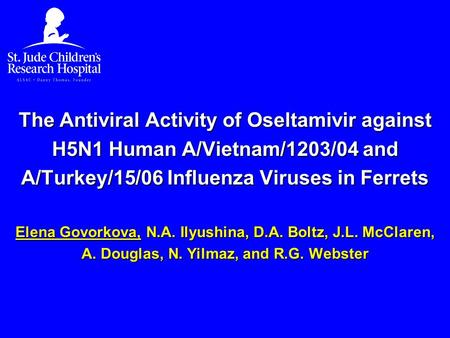 The Antiviral Activity of Oseltamivir against H5N1 Human A/Vietnam/1203/04 and A/Turkey/15/06 Influenza Viruses in Ferrets Elena Govorkova, N.A. Ilyushina,