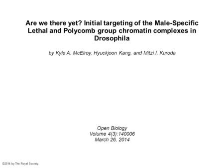 Are we there yet? Initial targeting of the Male-Specific Lethal and Polycomb group chromatin complexes in Drosophila by Kyle A. McElroy, Hyuckjoon Kang,