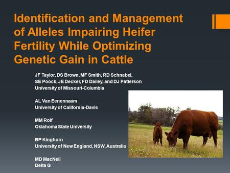 Identification and Management of Alleles Impairing Heifer Fertility While Optimizing Genetic Gain in Cattle JF Taylor, DS Brown, MF Smith, RD Schnabel,