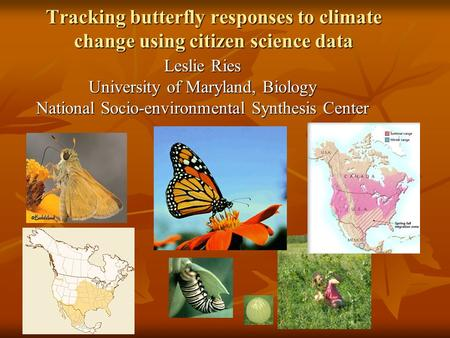 Tracking butterfly responses to climate change using citizen science data Leslie Ries University of Maryland, Biology National Socio-environmental Synthesis.