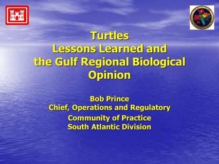 Turtles Lessons Learned and the Gulf Regional Biological Opinion Bob Prince Chief, Operations and Regulatory Community of Practice South Atlantic Division.