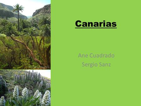 Canarias Ane Cuadrado Sergio Sanz. Situation It's an archipelago of the Athlantic Ocean It's located in front of the Northwestern coast of Africa. Está.
