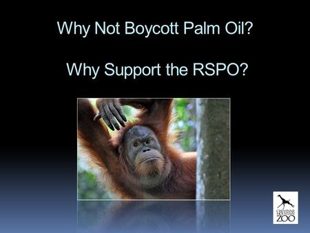 Why Not Boycott Palm Oil? Why Support the RSPO?. Why We Do Not Support Boycotting Palm Oil  Indonesia and Malaysia struggle with poverty… developing.