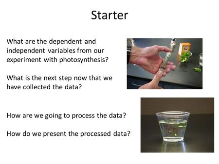 Starter What are the dependent and independent variables from our experiment with photosynthesis? What is the next step now that we have collected the.