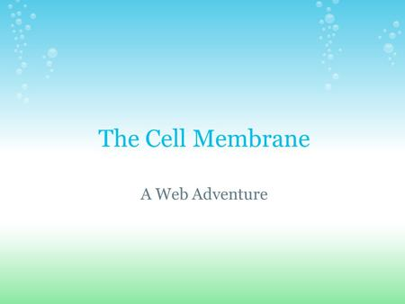 The Cell Membrane A Web Adventure.