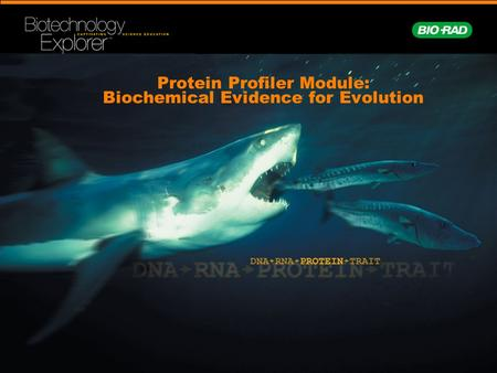 Protein Profiler Module: Biochemical Evidence for Evolution.