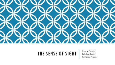 THE SENSE OF SIGHT Tammy Orozco Sabrina Godoy Katherine Franco.