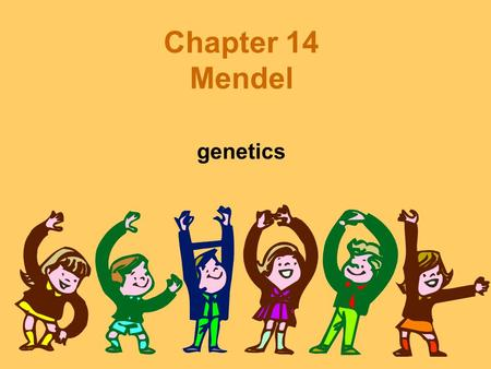 Chapter 14 Mendel genetics. Gregor Mendel Pea plants –Advantages Variety of characteristics –Seed color Many different traits –Yellow, green.