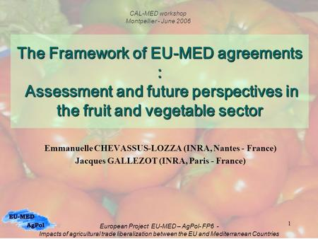 1 The Framework of EU-MED agreements : Assessment and future perspectives in the fruit and vegetable sector Emmanuelle CHEVASSUS-LOZZA (INRA, Nantes -