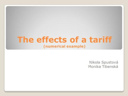 The effects of a tariff (numerical example) Nikola Spustová Monika Tibenská.