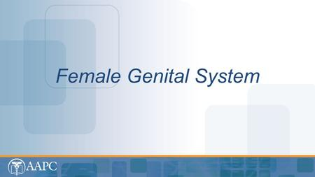 Female Genital System. CPT® copyright 2012 American Medical Association. All rights reserved. Fee schedules, relative value units, conversion factors.