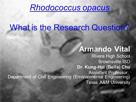 Rhodococcus opacus What is the Research Question? Armando Vital Rivera High School Brownsville ISD Dr. Kung-Hui (Bella) Chu Assistant Professor, Department.