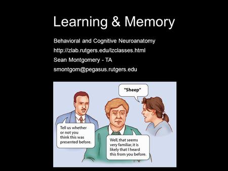 Learning & Memory Sean Montgomery - TA Behavioral and Cognitive Neuroanatomy