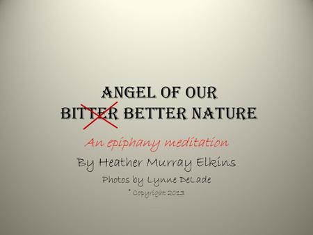 Angel of our bitter better Nature An epiphany meditation By Heather Murray Elkins Photos by Lynne DeLade © Copyright 2013.
