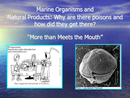 "Marine Organisms and Natural Products : Why are there poisons and how did they get there? ""More than Meets the Mouth"""