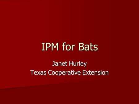 IPM for Bats Janet Hurley Texas Cooperative Extension.