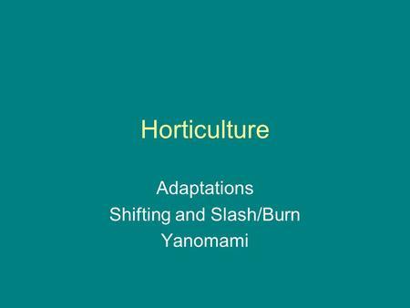 ap history yanamamo tribe Ritual behavior and the origin of modern cognition model for origins of modern cognition mount toba anatomically modern humans begin to.