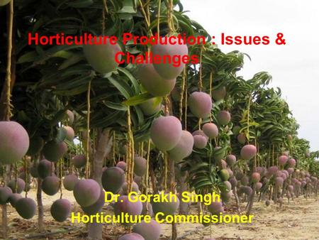 Horticulture Production : Issues & Challenges Dr. Gorakh Singh Horticulture Commissioner.