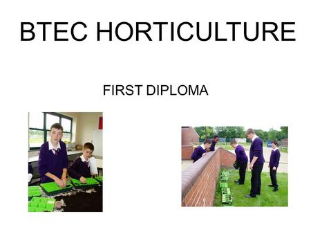 BTEC HORTICULTURE FIRST DIPLOMA. Practically based – opportunity to plan, grow and have responsibility for various horticultural areas within the school.