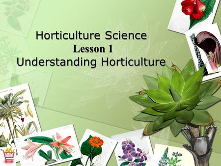 Horticulture Science Lesson 1 Understanding Horticulture.