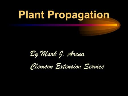 Plant Propagation By Mark J. Arena Clemson Extension Service.
